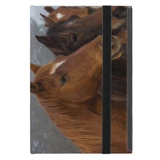Horse Triplets Cover For iPad Mini