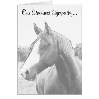 Horse Veterinary Sympathy Card