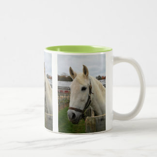 Horse Waiting at the Fence Two-Tone Coffee Mug