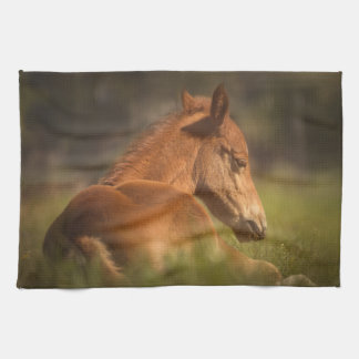 Horse - wild kitchen towel