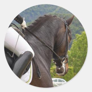 Horse with Raising Classic Round Sticker