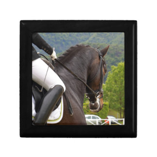 Horse with Raising Gift Box