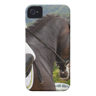 Horse with Raising iPhone 4 Case-Mate Cases