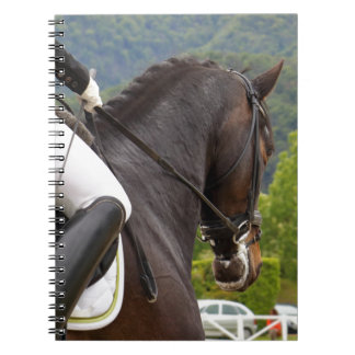 Horse with Raising Notebook