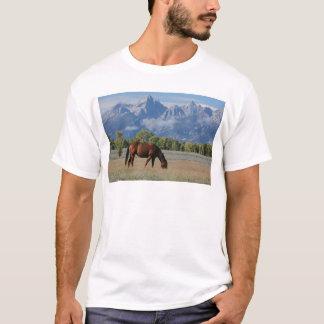 Horse, Wyoming Ranch T-Shirt