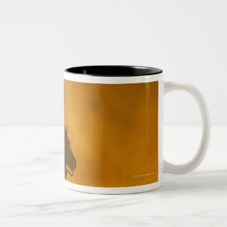 Horseback rider 3 Two-Tone coffee mug