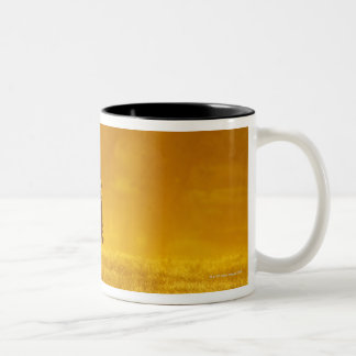 Horseback riders 10 Two-Tone coffee mug
