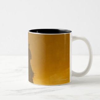 Horseback riders 3 Two-Tone coffee mug