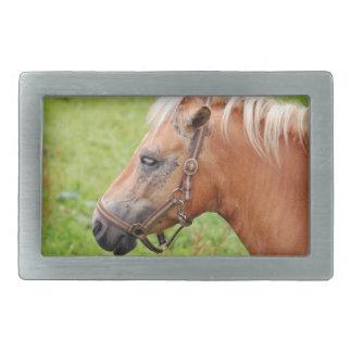 Horsehead 003 rectangular belt buckle