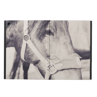 Horsehead Case For iPad Air