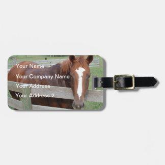 Horseplay Luggage Tag