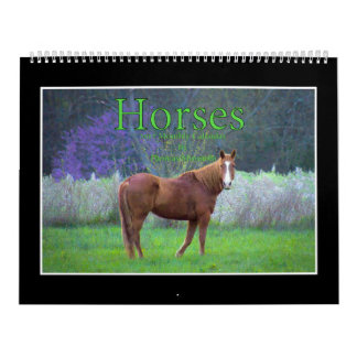 Horses 2017 Monthly Calendar By Thomas Minutolo