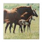 Horses and Foal Picture Tile