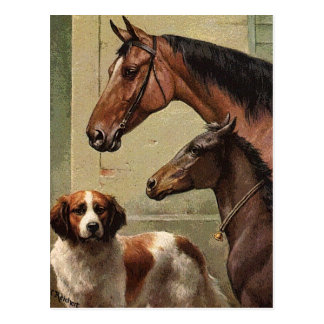 Horses and St Bernard Vintage Art Postcard