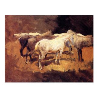 Horses at Palma by John Singer Sargent Postcard