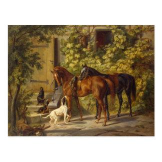 Horses at the Porch Postcard