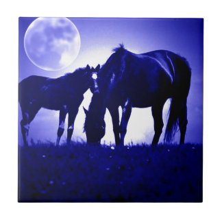 Horses & Blue Night Ceramic Tiles