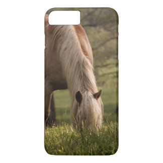 Horses grazing in meadow, Cades Cove, Great 3 iPhone 7 Plus Case