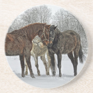 Horses Having a Meeting in Snow Coaster