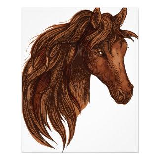 Horses Horse Sport Flyer