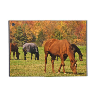 Horses in Autumn iPad Mini Case