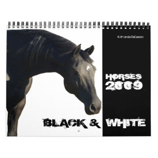 Horses in BLACK & WHITE Large 2009 Calendar