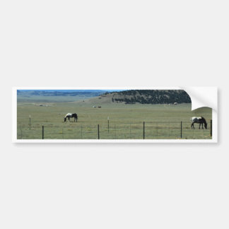 Horses in field with mountains bumper sticker