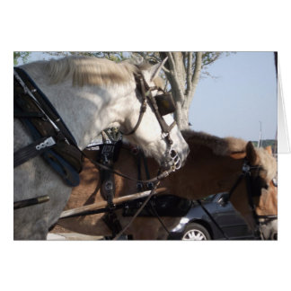 Horses in Harness Card