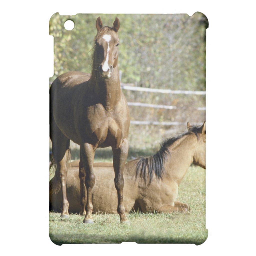 Ipad Mini Horse Cases Horses in Pasture Ipad Mini