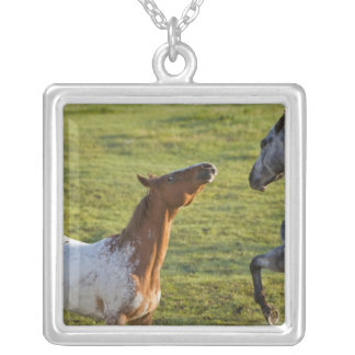 Horses in pasture near Polson, Montana Silver Plated Necklace