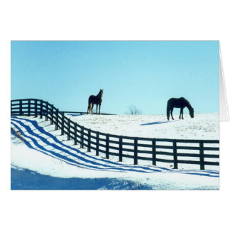 Horses in Snow Card