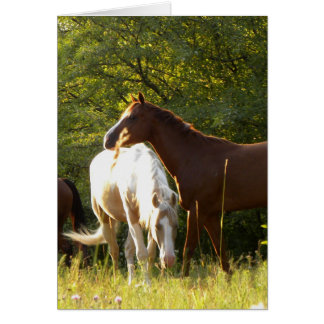 Horses in the Meadow Card