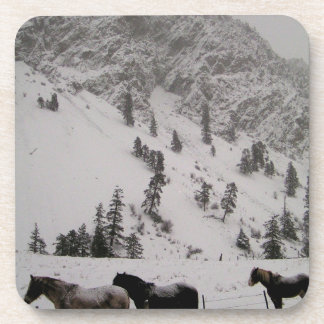 Horses in the snow in the mountains drink coaster