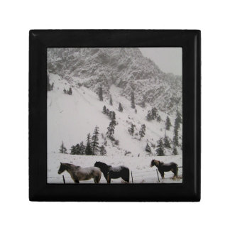 Horses in the snow in the mountains gift boxes