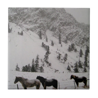 Horses in the snow in the mountains tile
