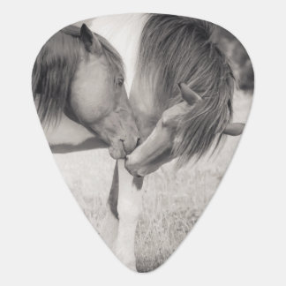 Horses Kissing Guitar Pick
