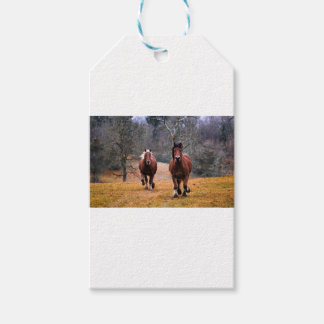 Horses Nature Gift Tags