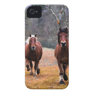 Horses Nature iPhone 4 Cover