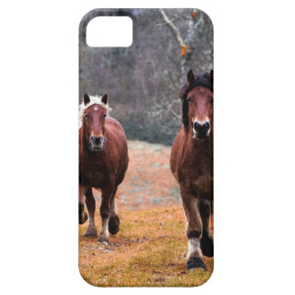 Horses Nature iPhone 5 Cover