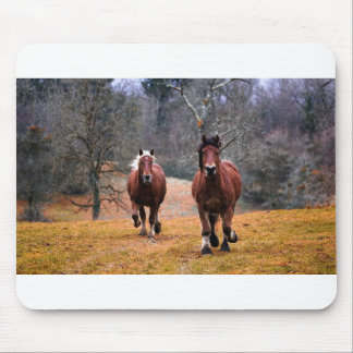Horses Nature Mouse Pad