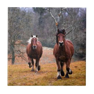 Horses Nature Tile