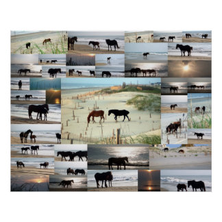 Horses of Carova Poster