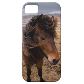 Horses of Iceland Case For The iPhone 5