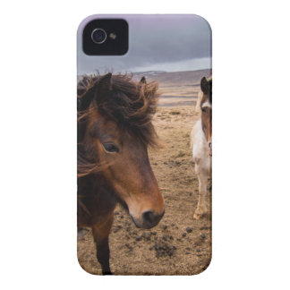 Horses of Iceland iPhone 4 Case