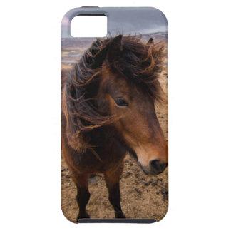 Horses of Iceland iPhone 5 Case