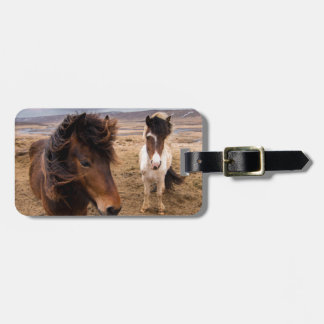 Horses of Iceland Luggage Tag