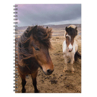 Horses of Iceland Notebook