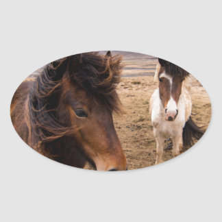 Horses of Iceland Oval Sticker