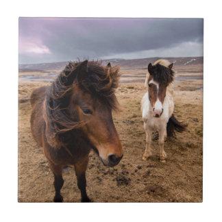 Horses of Iceland Tile