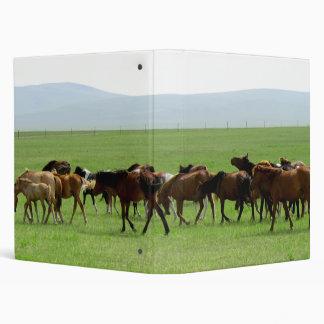 Horses on Grassland - Landscape Photograph Binder